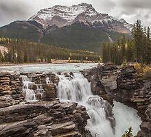 Athabasca Falls - Canada by Ron Finkel