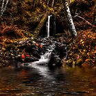 Just To Cool ~ Fall Colors ~ by Charles & Patricia   Harkins ~ Picture Oregon