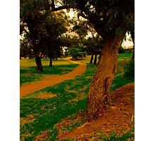 Walk Into A Dream. Photographic Print