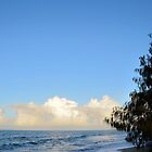 Woodgate Beach by Woodgate