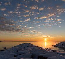 Greeting the Winter Sun on the Lake by Georgia Mizuleva