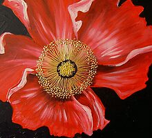 Red Poppy by Cherie Roe Dirksen