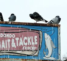 Redondo Bait and Tackle Shop by Stacey Lazarus