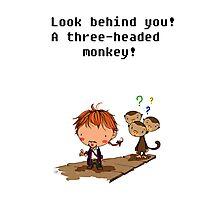 Three headed monkey!! Photographic Print