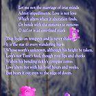 Shakespeare Sonnet 116 by KayeDreamsART