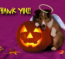 Thank You Angel Sheltie Puppy by jkartlife