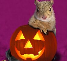 Halloween Party Squirrel by jkartlife