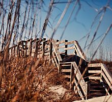 Warm Boardwalk by cvanphoto