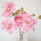 Confederate Rose by cvanphoto