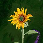 My One and Only… Sunflower by Anne Gitto
