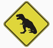 T-Rex Crossing Kids Clothes