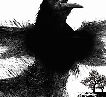caw caw! by arteology