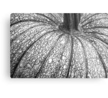 Pumpkin Pumpkin Black and White Metal Print