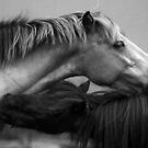 Ponies Black and White by jamieleigh