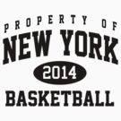 New York 2014 Basketball by worldcup