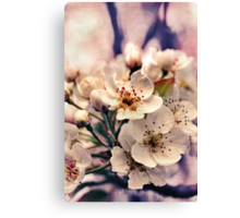 Blossoms at Dusk  Canvas Print