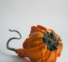 Farmers Market Gourds 2014 -3 bottom by BonnieJames