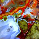 Oasis (Plume Agate) by Stephanie Bateman-Graham