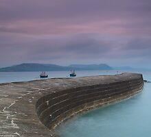 The Cobb, Lyme Regis by Davidpstephens