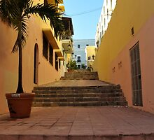 Old San Juan by heyjess