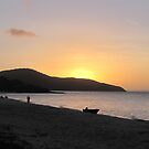 Sunset at Punsand Bay by dozzam