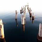 Old pier remains - Port Germein, South Australia by John Kleywegt