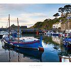 Polperro by Andrew Roland