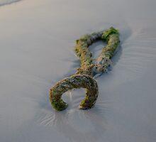 the rope on beach seen at sunset - 1 by vishwadeep  anshu