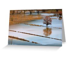 More than rain Greeting Card