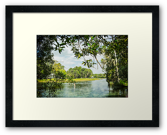 Framing the Rainbow River by designingjudy