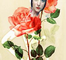 Rose in Winter by Sarah Jarrett