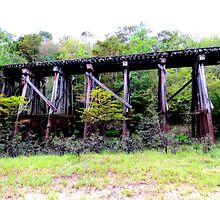 railroad trestle in the woods by tomcat2170