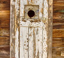 Classic Rustic Rural Worn Old Barn Door by Bo Insogna