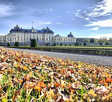 Being Royal in Stockholm  (1) by Larry Lingard-Davis