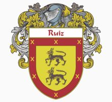 Ruiz Coat of Arms/Family Crest by William Martin