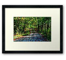 Little Shepherd Trail Framed Print