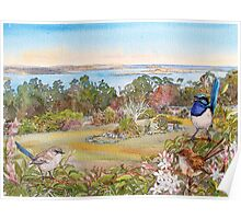 Mt Nelson Signal Station view with  Blue Wrens Poster