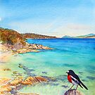 Scarlet Robin on Painted Cliffs, Maria Island by melhillswildart