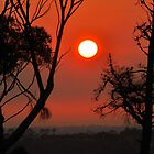 Red Sun by Raymond J. Marcon
