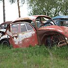 Automobile Graveyard No 8 by Barry W  King