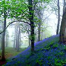 Misty Blue Hillfort by Charmiene Maxwell-batten