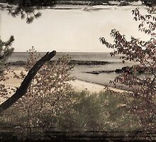 Vintage Lake Superior Beach by perkinsdesigns