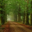 On the lane to autumn again by jchanders