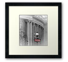 Paris Metro Grand Palais Framed Print