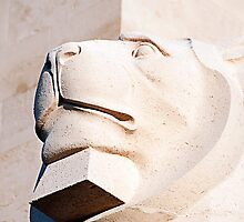 Lion statue, Royal naval memorial, Plymouth, Devon, UK by buttonpresser