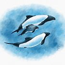 Commerson's Dolphin Family by Art-by-Aelia