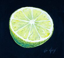 Lime by Aaron Spong