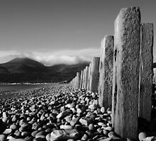 Murlough Beach View Too by Wrayzo