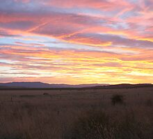 Sunset on the Midland Plains by suburbanjubilee
