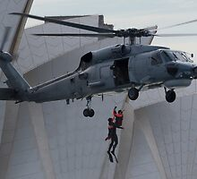 Seahawk to the Rescue by diggle